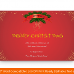 Christmas-Twinkles-Gift-Certificate-Template–(5896)