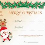 12-Christmas-Gift-Certificate-Dancing-Santa1862
