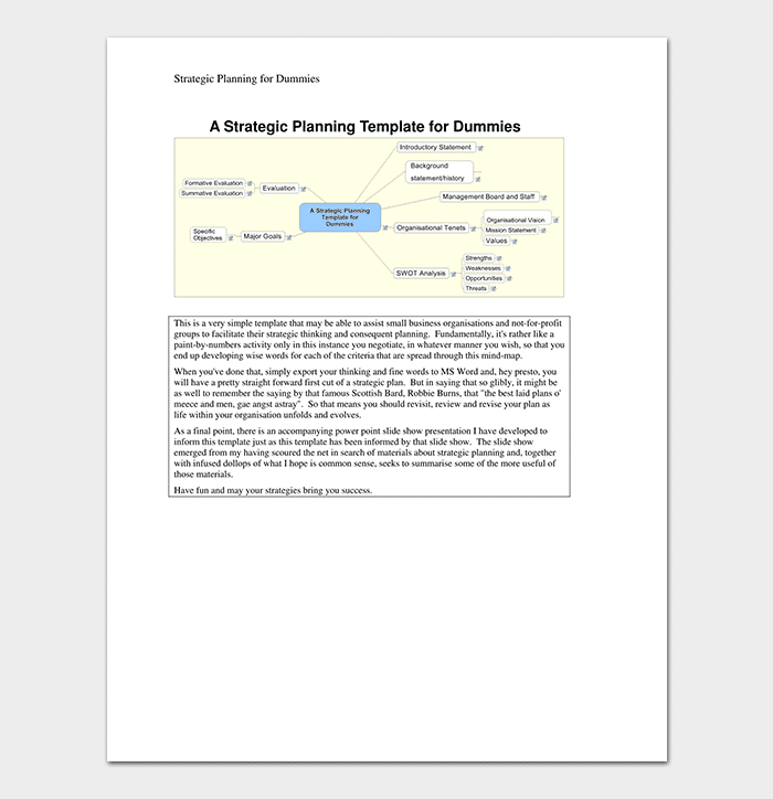 Strategic Planning Template for Dummies (PDF)