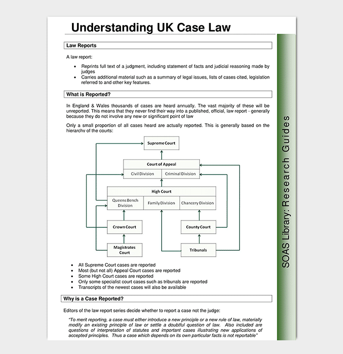 Law Case Analysis Template