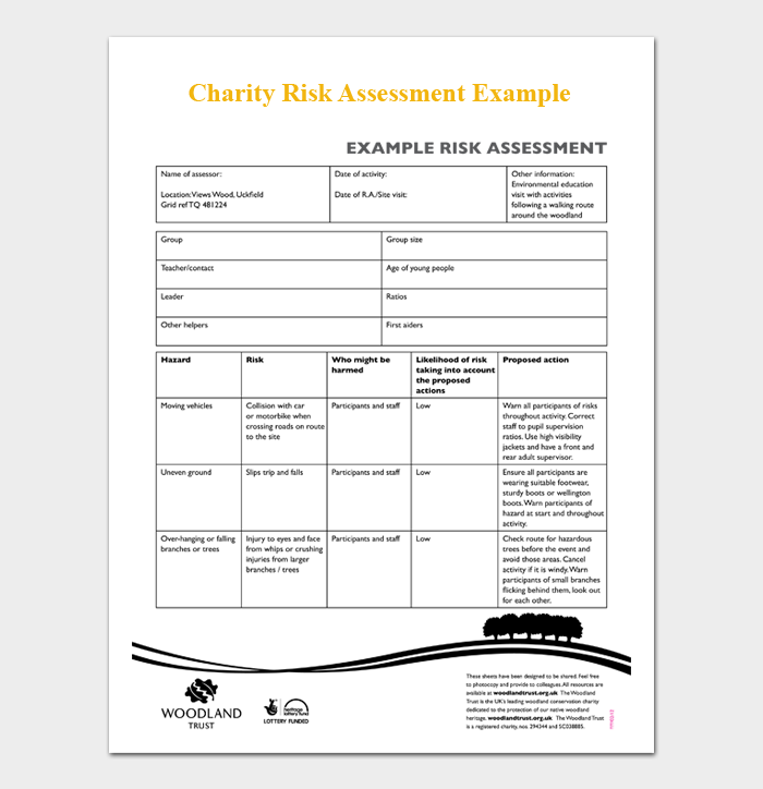 Charity Risk Assessment Example