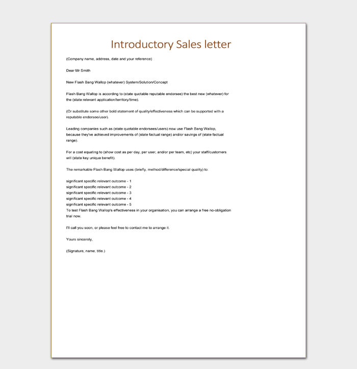 Introductory Sales Letter Template Editable Download