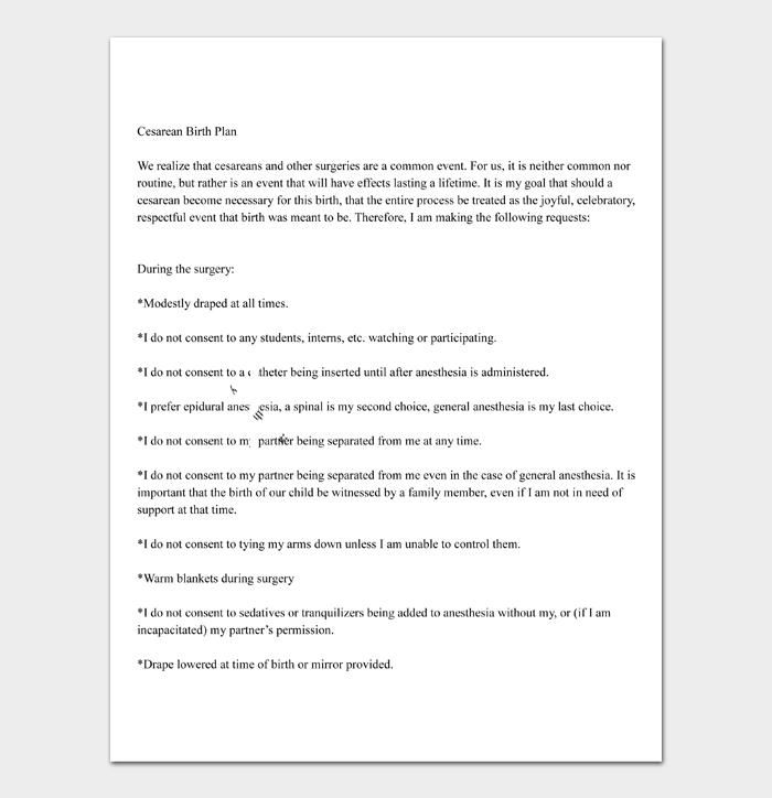 14+ Free Birth Plan Templates (MS Word, PDF) | Doc Formats