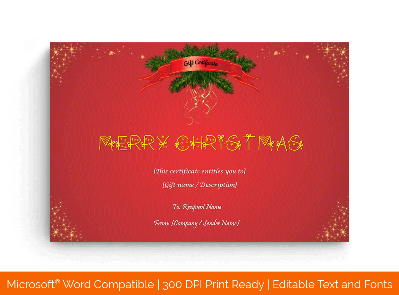 Christmas Twinkles Gift Certificate Template 5896