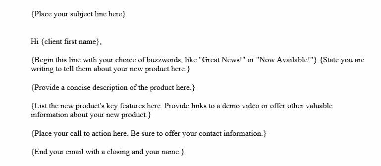Product Introduction Email to Client (Word Template)