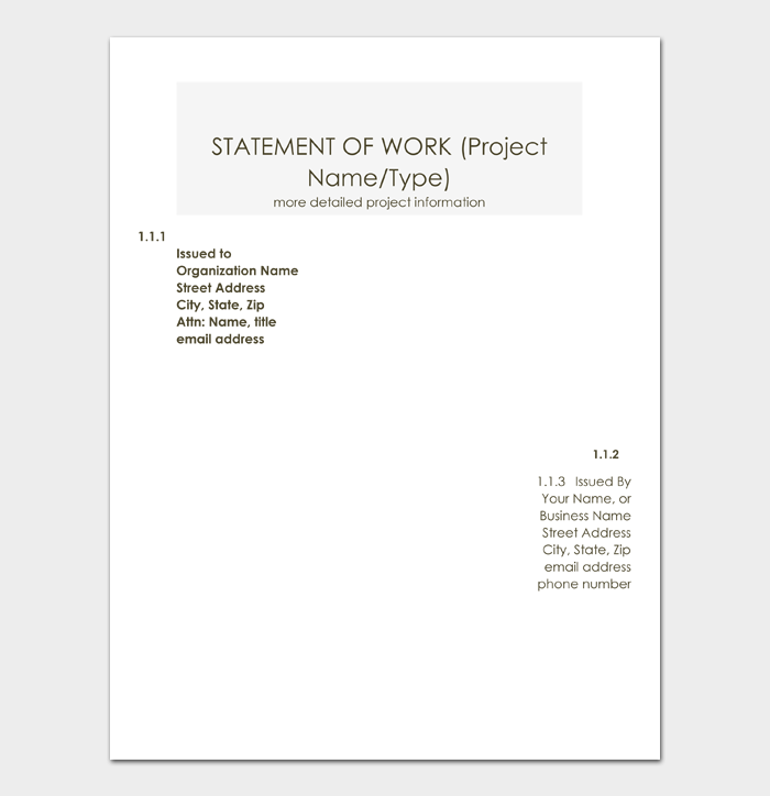 STATEMENT OF WORK (Project Name or Type)