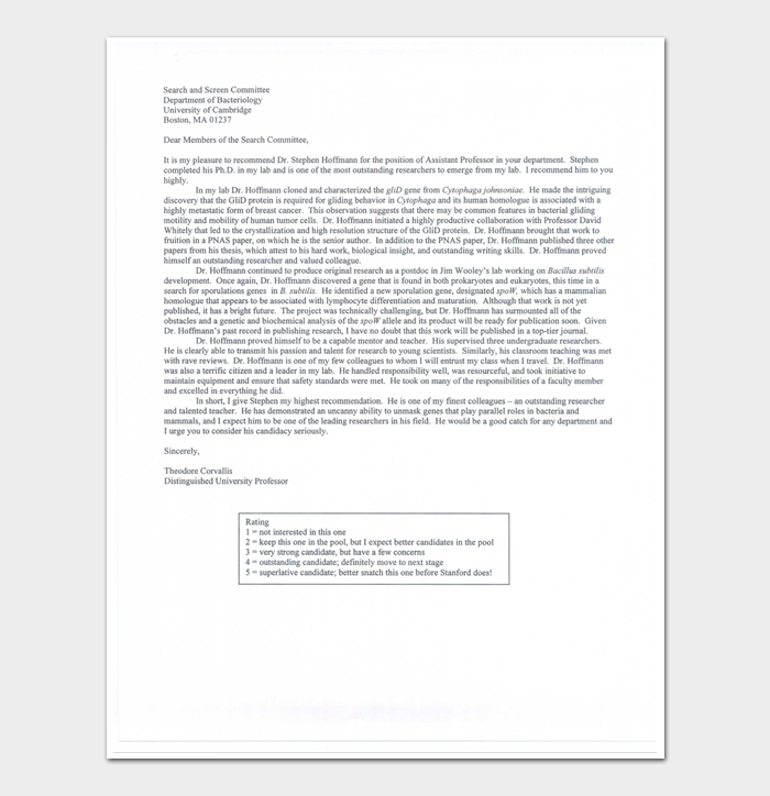 Job Application Reference Letter Format
