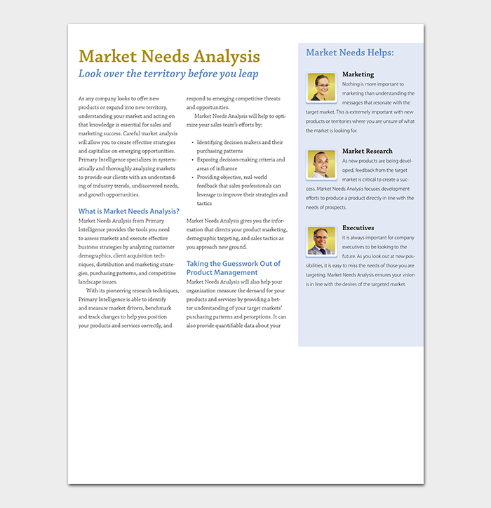 Market Needs Analysis Sample
