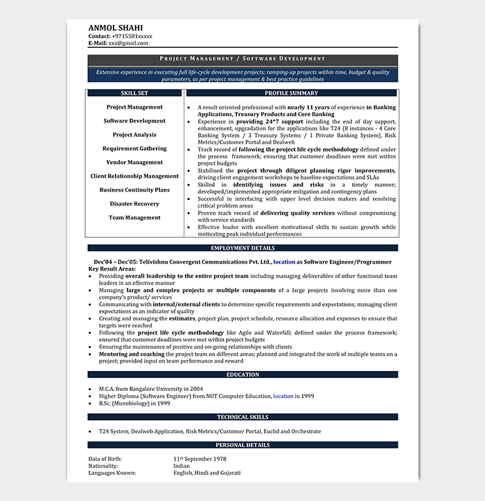 Resume Format For Experienced It Professionals from images.docformats.com