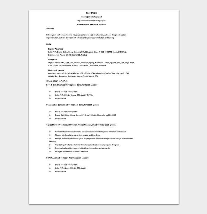 Professional Web Developer CV