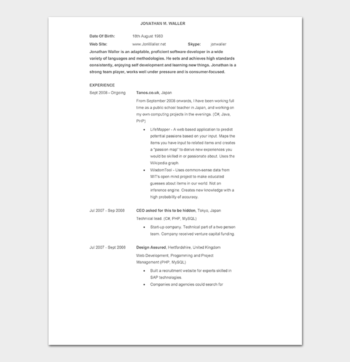 Web Developer CV in WORD