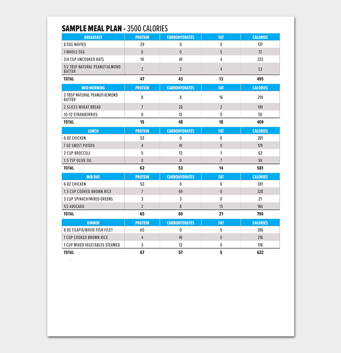 Daily Diet Chart Sample