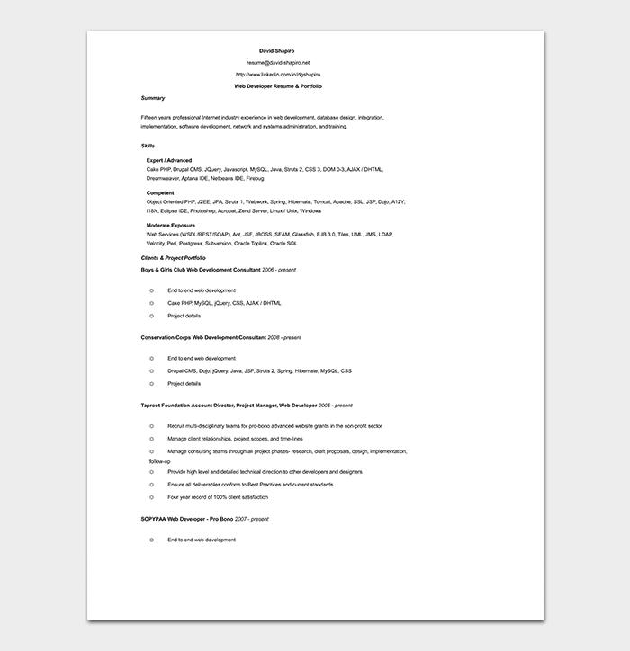 Professional Web Developer Resume WORD