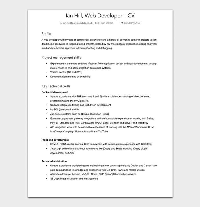 Professional Web Developer Resume