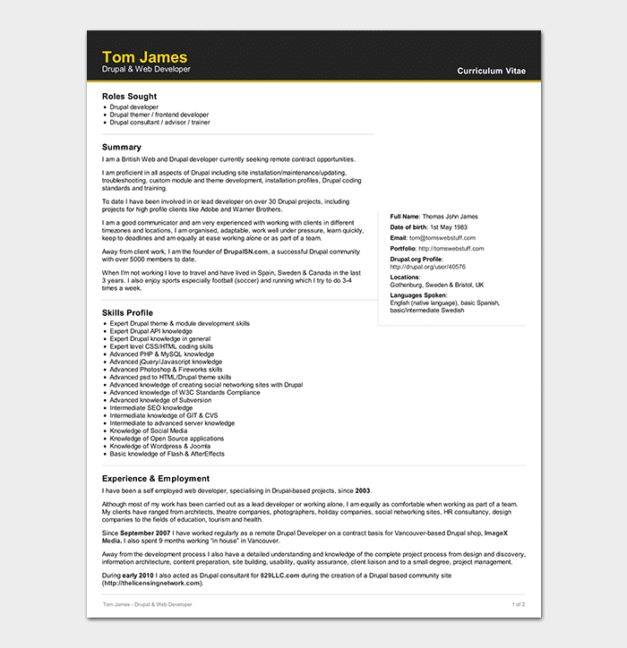 web developer resume template 15 sample resumes word pdf format